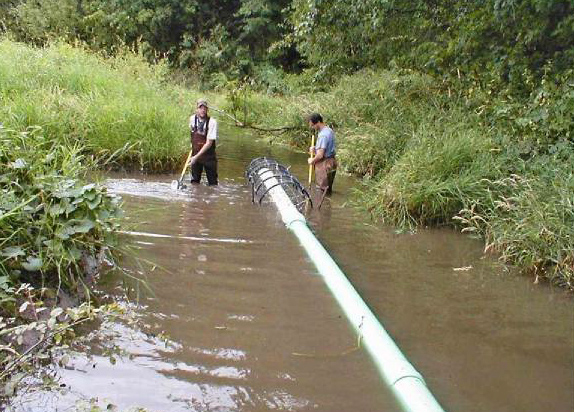 Beaver Deceiver Pipe Being Installed